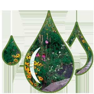 decorative drop 3
